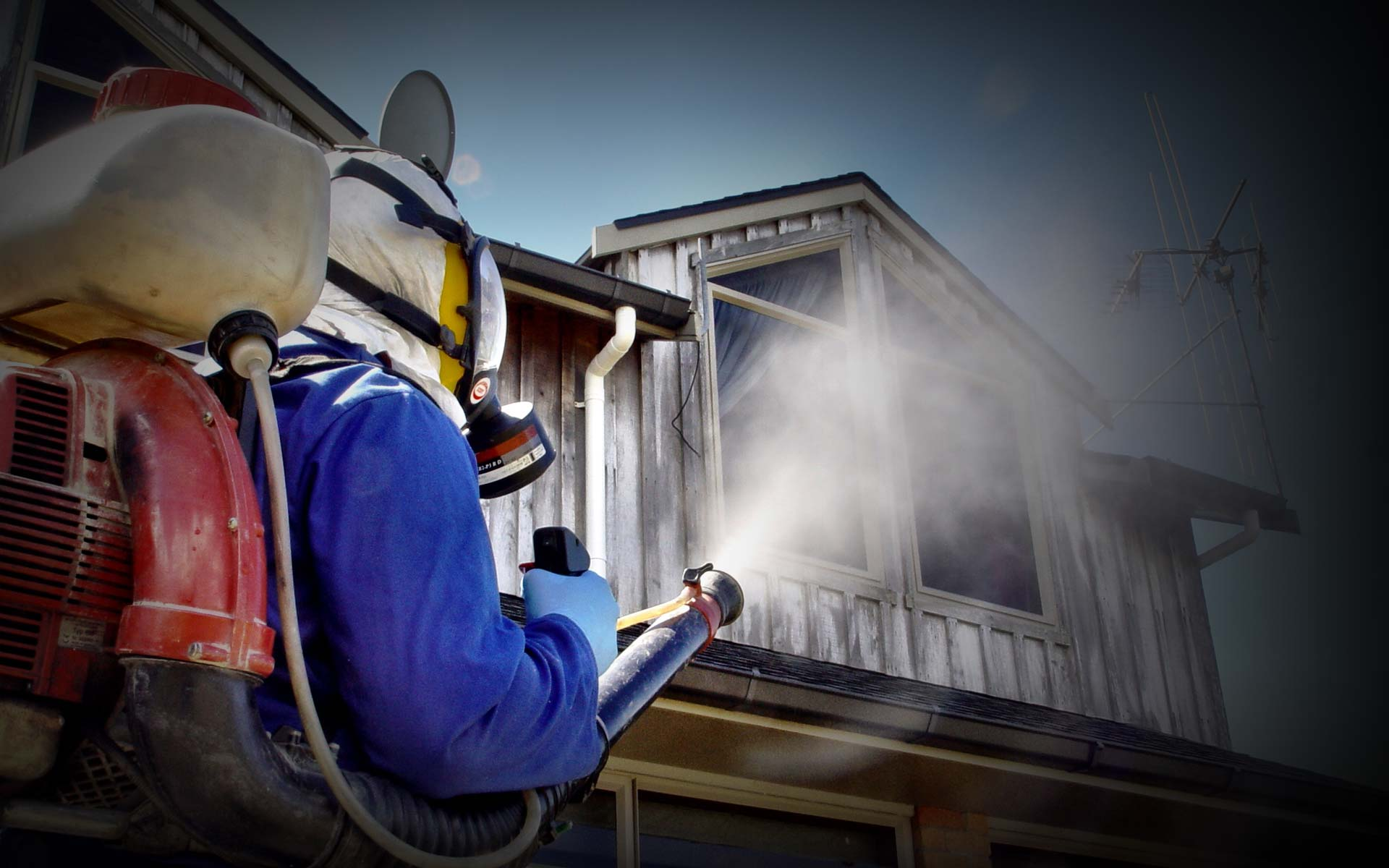 Benefits Of Preparing Termite Pest Inspection Reports By The Experts