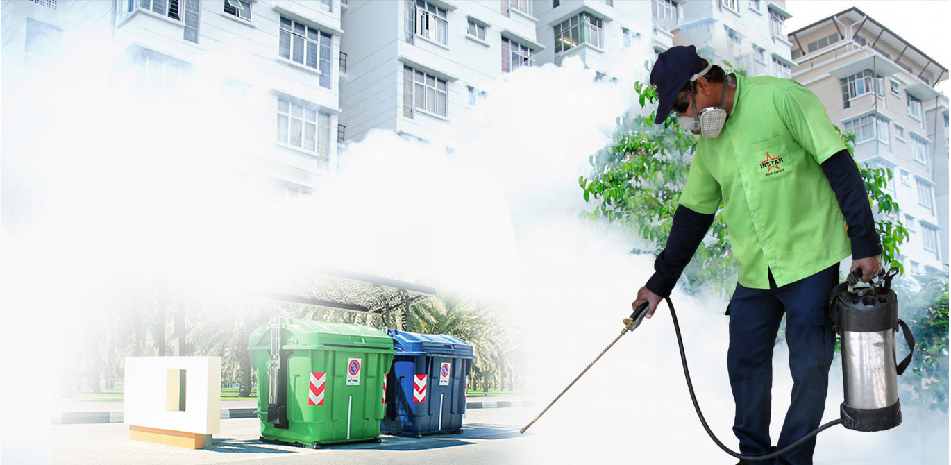 Importance of Building And Pest Inspection Sydney
